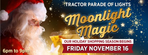 Moonlight Magic - Downtown Orangeville