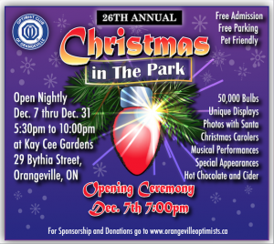 christmas in the park event poster