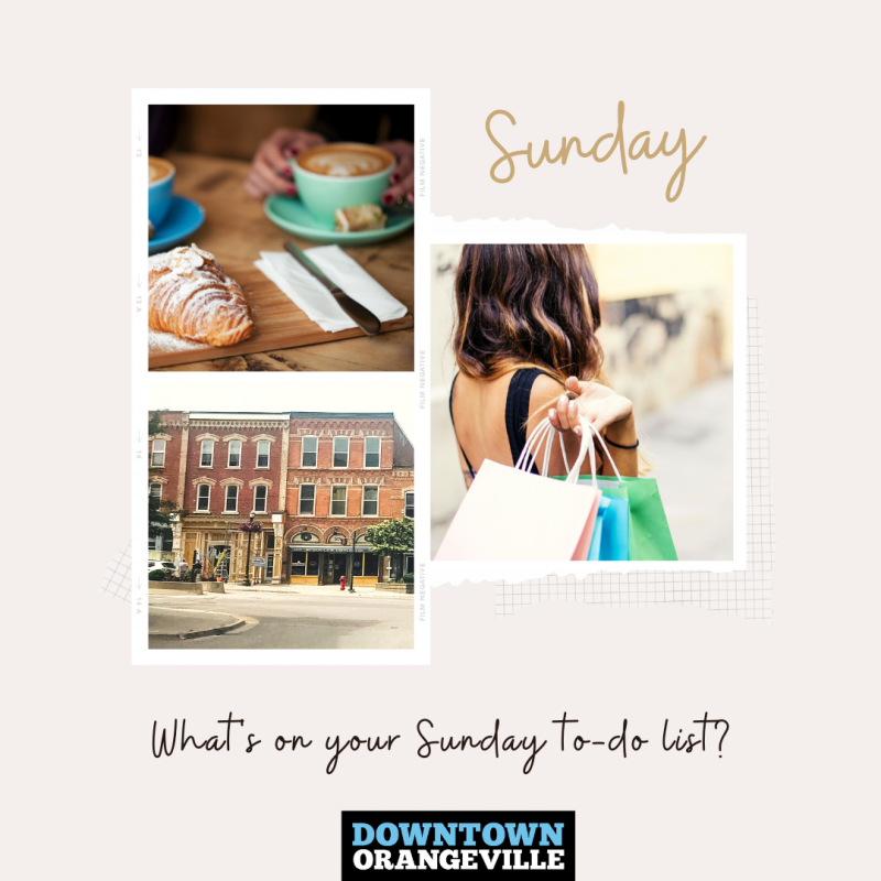 Read more about the article Come Shop with us on Sundays!