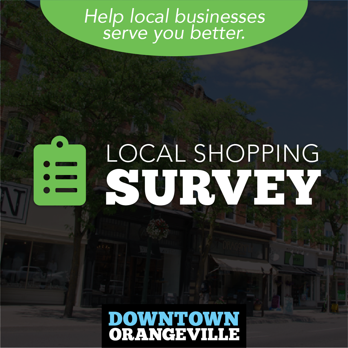 Local Shopping Survey