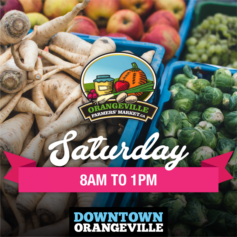 Read more about the article Summer in Downtown Orangeville